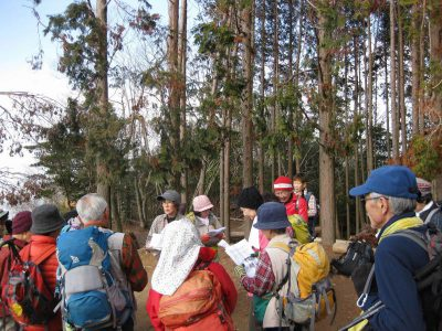 ほっこり山行(21) 比叡平からの大文字山