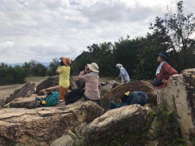トリトリ会㉗ 岩間山でタカの渡り観察